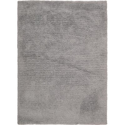 Morales Light Grey Area Rug Rug Size: Rectangle 76 x 96