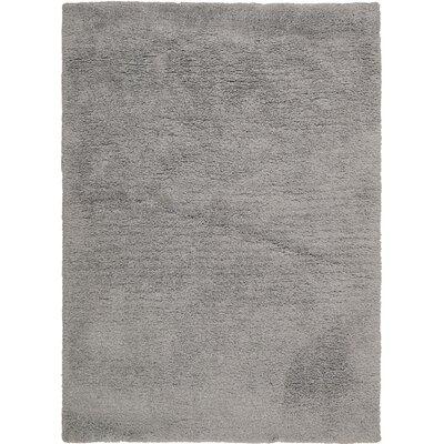 Morales Light Grey Area Rug Rug Size: 76 x 96