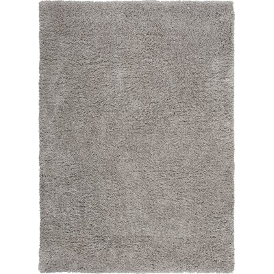 Vandiver Hand-Tufted Silver Area Rug Rug Size: Rectangle 76 x 96