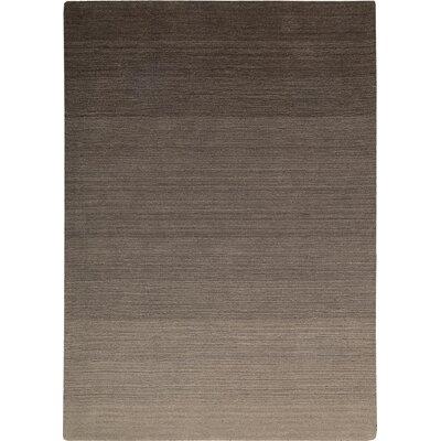 Fidel Handmade Slate Area Rug Rug Size: 36 x 56