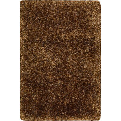Tran Chocolate Area Rug Rug Size: Rectangle 36 x 56