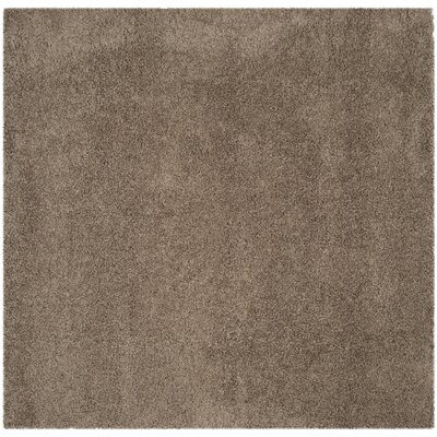 Nickols Shag Taupe Area Rug Rug Size: Square 67 x 67