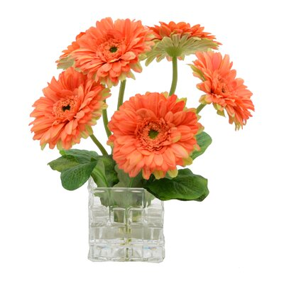 Faux Orange Daisy