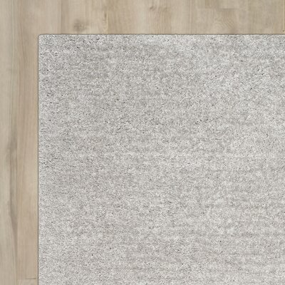 Sadler Gray Shag Area Rug Rug Size: Rectangle 3 x 5