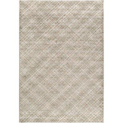 Mcmann Light Gray Area Rug Rug Size: 5'2