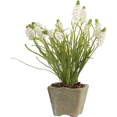 Faux Grape Hyacinth Floral Arrangements in Pot Color: White
