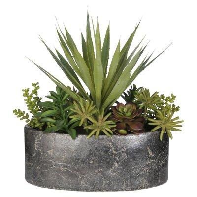 Artificial Succulent Garden Desk Top Plant in Planter