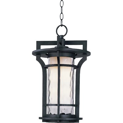 Feltonville 1-Light Outdoor Hanging Lantern