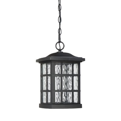 Lockett 1-Light Outdoor Hanging Lantern Finish: Mystic Black
