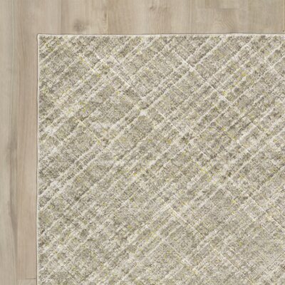 Mcmann Light Gray Area Rug Rug Size: Rectangle 22 x 3