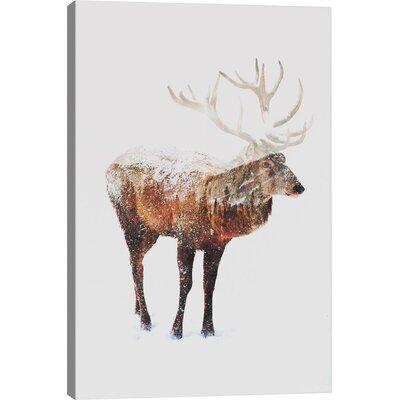 Brayden Studio Deer V Graphic Art on Wrapped Canvas