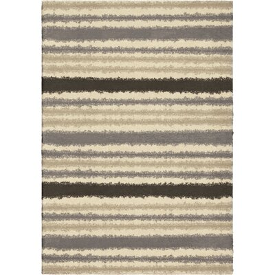 Mulloy Area Rug Rug Size: 53 x 76