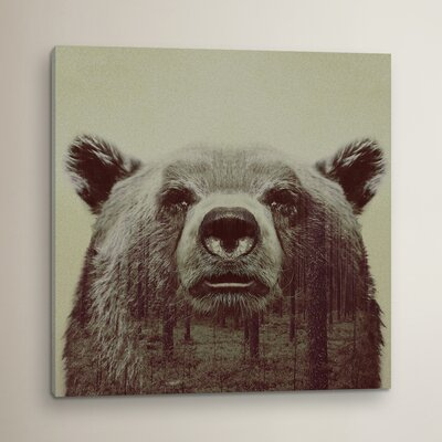 Bear II Graphic Art on Wrapped Canvas
