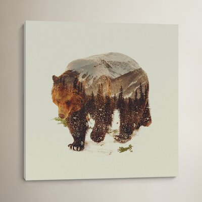 'Bear I' by Andreas Lie Graphic Art on Wrapped Canvas