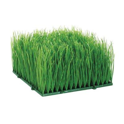 Wheat Grass Mat