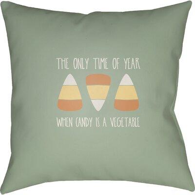 Marten Indoor/Outdoor Throw Pillow Size: 20 H x 20 W x 4 D, Color: Green/White/Orange