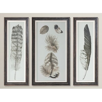 Feather Study Prints 3 Piece Framed Graphic Art Set