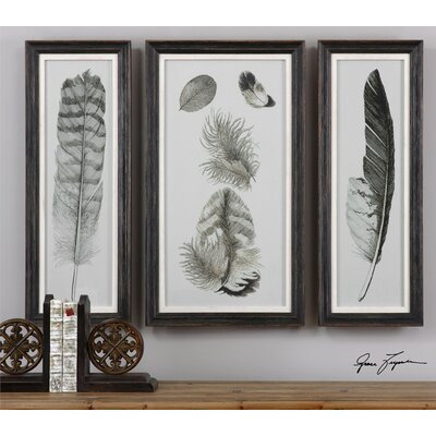 Brayden Studio Feather Study Prints 3 Piece Framed Graphic Art Set