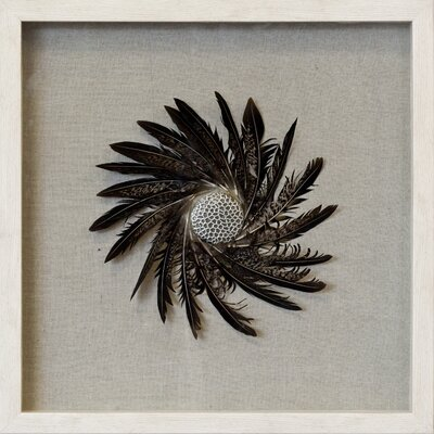 Brown Feather Spiral Shadow Box Linen Wall Décor
