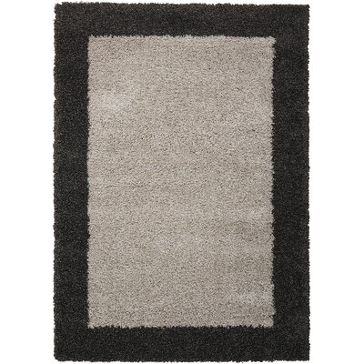 Emesa Gray/Charcoal Area Rug Rug Size: Rectangle 53 x 75