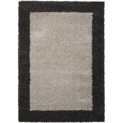 Emesa Gray/Charcoal Area Rug Rug Size: 311 x 511