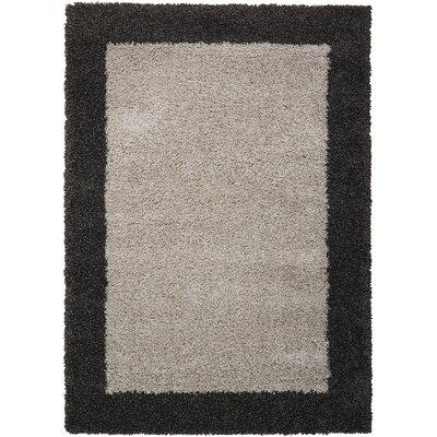 Emesa Gray/Charcoal Area Rug Rug Size: 53 x 75