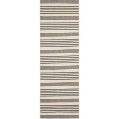 Eres Grey/Bone Indoor/Outdoor Area Rug Rug Size: Runner 24 x 67