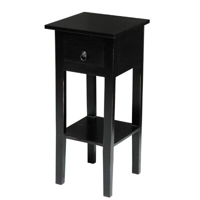 Eurydice End Table With Storage Color: Black