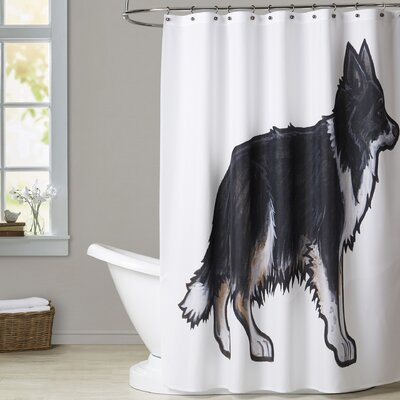Berardi Border Collie 2 Shower Curtain
