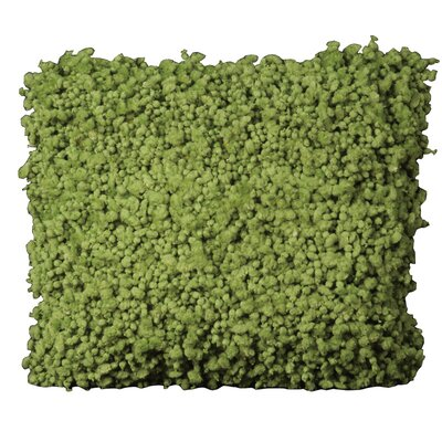 Shag Throw Pillow Color: Green