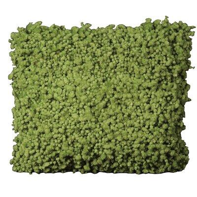 Shag Throw Pillow Color: Green