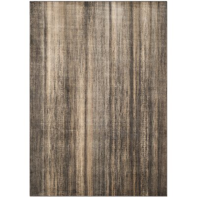 Coppage Soft Anthracite Rug Rug Size: 67 x 92