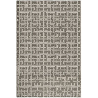 Soundview Hand-Knotted Gray Area Rug Rug Size: Rectangle 10 x 14