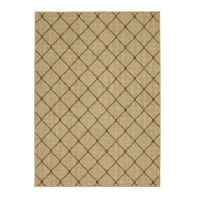 Locri Multi Area Rug Rug Size: Rectangle 76 x 10