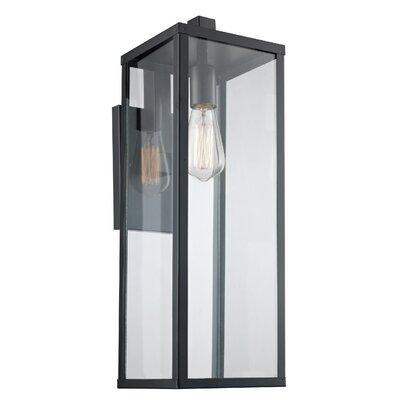 Brayden Studio Pinon 1-Light Wall Lantern
