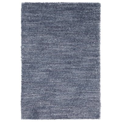 Mixson Blue Area Rug Rug Size: Rectangle 76 x 10