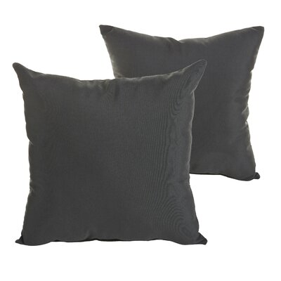 Quan Indoor/Outdoor Sunbrella Throw Pillow Size: 18 H x 18 W x 6 D