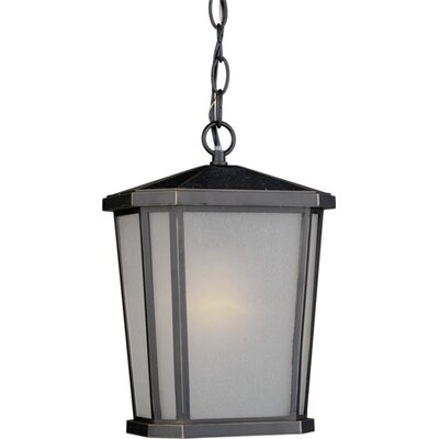 Esters 1-Light Outdoor Pendant