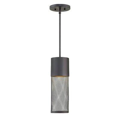Brayden Studio Proulx 1-Light Outdoor Mini Pendant