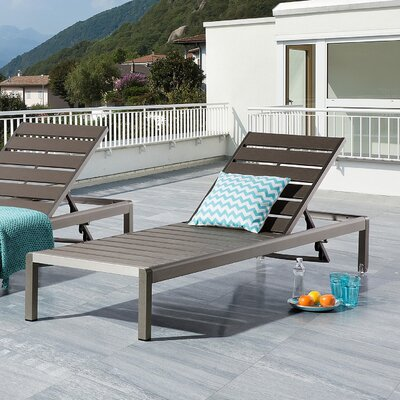 Robbins Chaise Lounge Finish: Gray