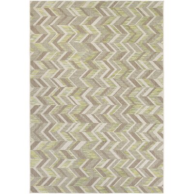 Loranger Lemon/Gray Indoor/Outdoor Area Rug Rug Size: Runner 27 x 82
