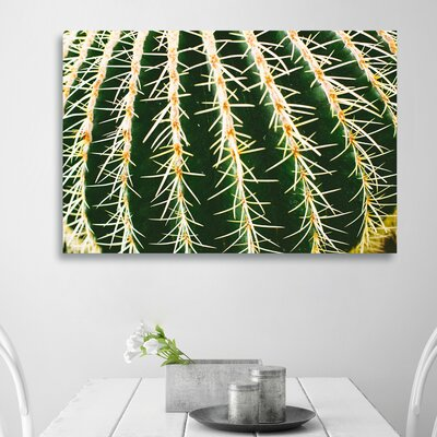 'Cactus Close' Photographic Print on Canvas Size: 10'' H x 15'' W x 1.5'' D