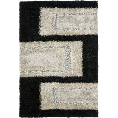 Sinope Black/Grey Rug Rug Size: Rectangle 6 x 9