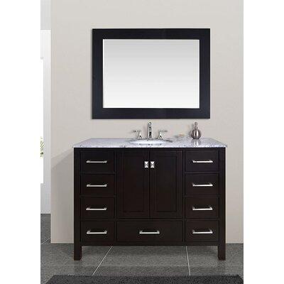 Ankney 48 Single Bathroom Vanity Set with Mirror Base Finish: Espresso
