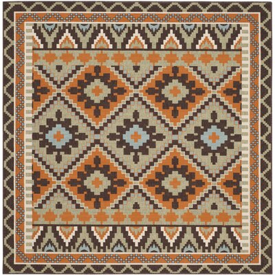 Henbury Brown Indoor/Outdoor Area Rug Rug Size: Square 67