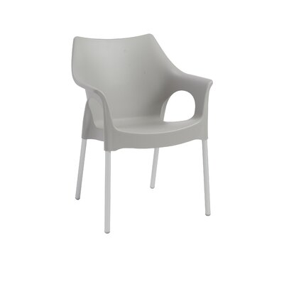 Blaisdell Arm Chair Finish: Gray