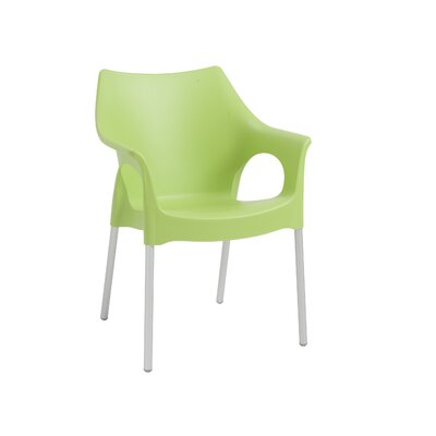 Blaisdell Arm Chair Finish: Green