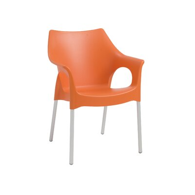 Blaisdell Arm Chair Finish: Orange