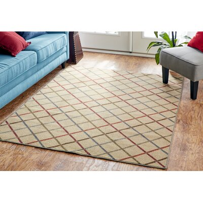 Locri Light Multi Area Rug Rug Size: Rectangle 5 x 7