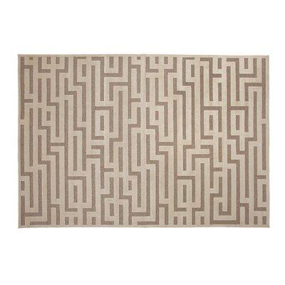 Teague Ivory Area Rug Rug Size: 710 x 112